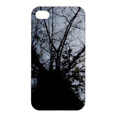 An Old Tree Apple iPhone 4/4S Premium Hardshell Case