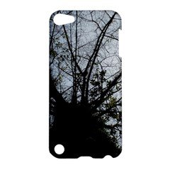 An Old Tree Apple iPod Touch 5 Hardshell Case