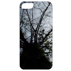 An Old Tree Apple Iphone 5 Classic Hardshell Case
