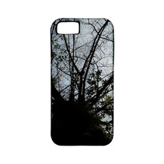 An Old Tree Apple iPhone 5 Classic Hardshell Case (PC+Silicone)