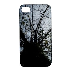 An Old Tree Apple iPhone 4/4S Hardshell Case with Stand