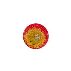 A Red Flower 1  Mini Button Magnet