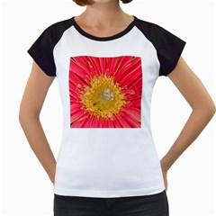 A Red Flower Women s Cap Sleeve T-Shirt (White)