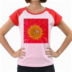 A Red Flower Women s Cap Sleeve T-Shirt (Colored)
