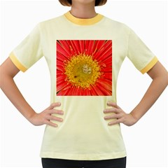 A Red Flower Womens  Ringer T Shirt (colored)