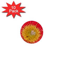 A Red Flower 1  Mini Button (10 Pack)