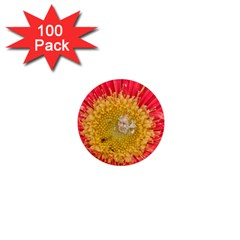 A Red Flower 1  Mini Button Magnet (100 Pack)