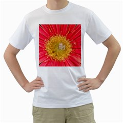 A Red Flower Mens  T-shirt (White)