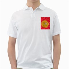 A Red Flower Mens  Polo Shirt (White)