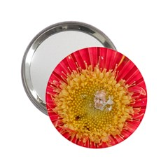 A Red Flower Handbag Mirror (2.25 )