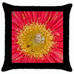 A Red Flower Black Throw Pillow Case