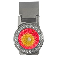 A Red Flower Money Clip (CZ)