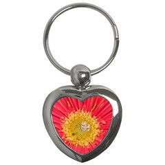 A Red Flower Key Chain (Heart)