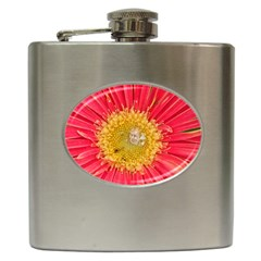 A Red Flower Hip Flask