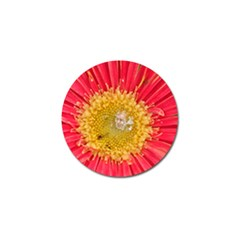 A Red Flower Golf Ball Marker 10 Pack