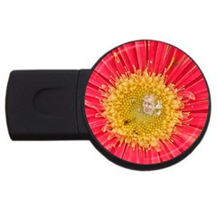 A Red Flower 1GB USB Flash Drive (Round)