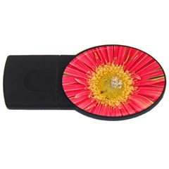 A Red Flower 2GB USB Flash Drive (Oval)