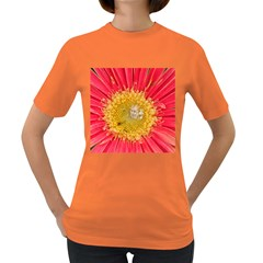 A Red Flower Womens' T Shirt (colored)