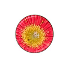 A Red Flower Golf Ball Marker 4 Pack (for Hat Clip)