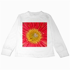 A Red Flower Kids Long Sleeve T Shirt