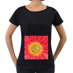 A Red Flower Womens' Maternity T-shirt (Black)