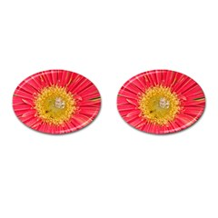 A Red Flower Cufflinks (Oval)