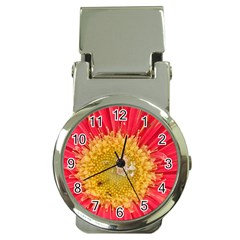 A Red Flower Money Clip with Watch