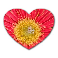 A Red Flower Mouse Pad (Heart)