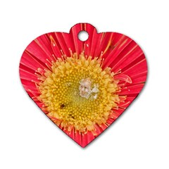 A Red Flower Dog Tag Heart (One Sided)