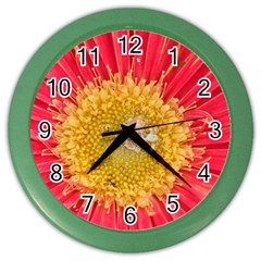 A Red Flower Wall Clock (Color)