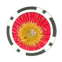A Red Flower Poker Chip 10 Pack