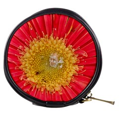 A Red Flower Mini Makeup Case