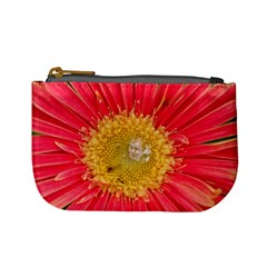 A Red Flower Coin Change Purse