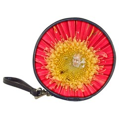 A Red Flower Cd Wallet
