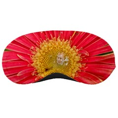 A Red Flower Sleeping Mask