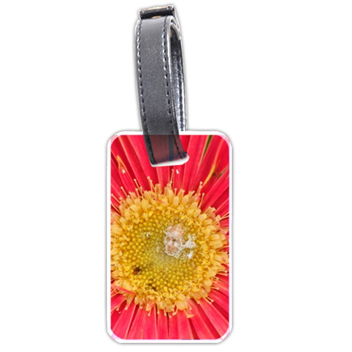 A Red Flower Luggage Tag (Two Sides)