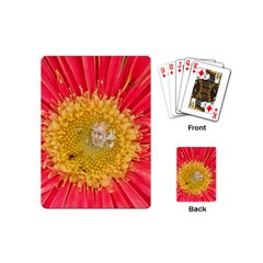 A Red Flower Playing Cards (Mini)