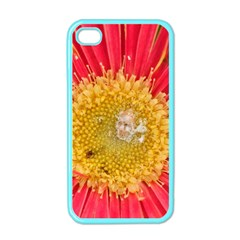 A Red Flower Apple iPhone 4 Case (Color)