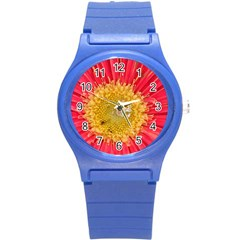 A Red Flower Plastic Sport Watch (Small)