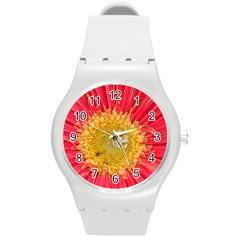 A Red Flower Plastic Sport Watch (Medium)