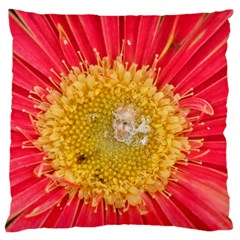 A Red Flower Large Cushion Case (One Side)