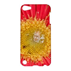 A Red Flower Apple iPod Touch 5 Hardshell Case
