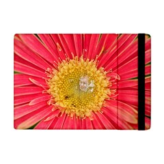A Red Flower Apple Ipad Mini Flip Case