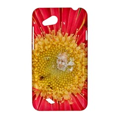 A Red Flower HTC T328D (Desire VC) Hardshell Case