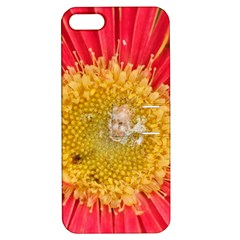 A Red Flower Apple iPhone 5 Hardshell Case with Stand