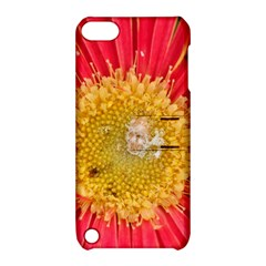 A Red Flower Apple iPod Touch 5 Hardshell Case with Stand