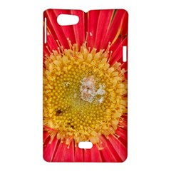 A Red Flower Sony Xperia Miro Hardshell Case