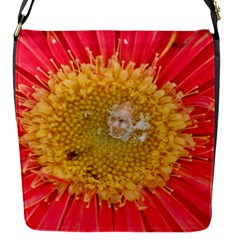 A Red Flower Flap closure messenger bag (Small)