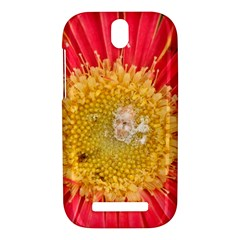 A Red Flower HTC One SV Hardshell Case