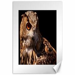 Owl Canvas 12  x 18  (Unframed)